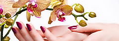 Natural and organic nail products. Healthy nail care Phoenix AZ.